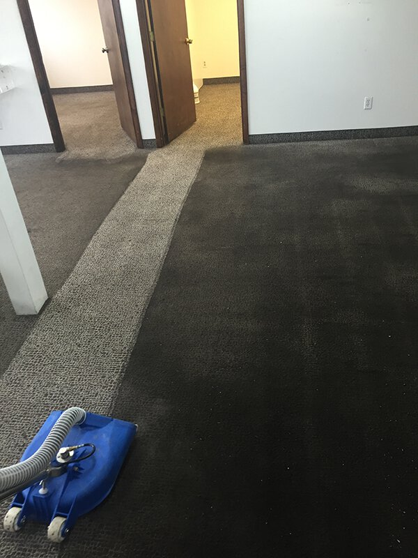Wet Extraction Carpet Cleaning in the Grand Rapids area